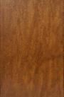 Arbutus Stain on Maple