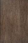 Bark Maple Door