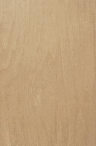 Cashew Maple Door
